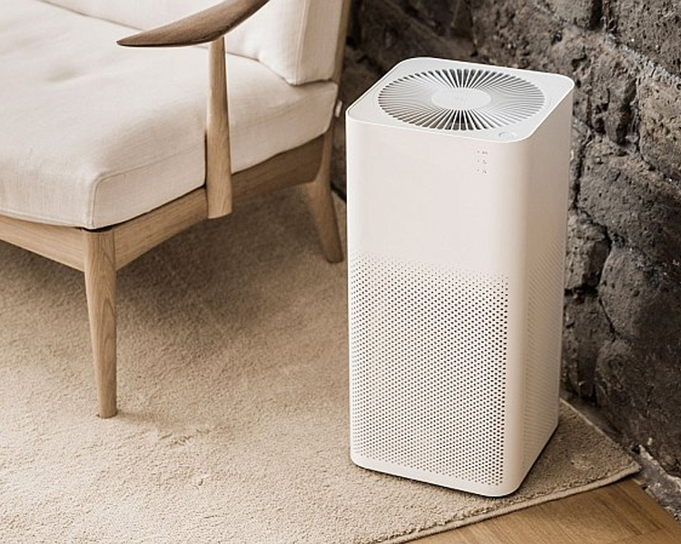 5 reason you must have air purifier